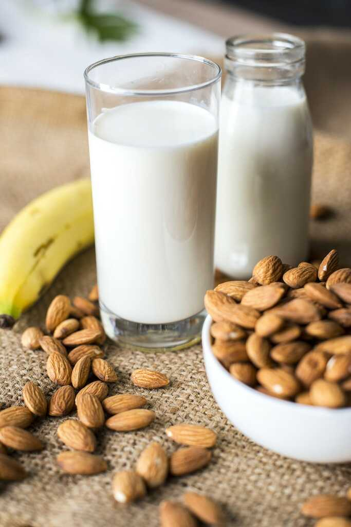 leite vegetal